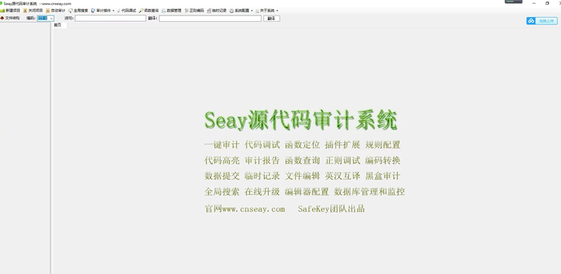 【审计系统源码】SEAY代码 独家去除后门/排门 去马修复版-找主题源码